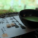 Matcha Tee kaufen_2